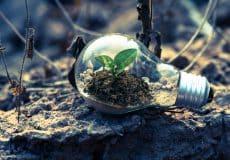 Économie circulaire : quels avantages pour les entreprises ?